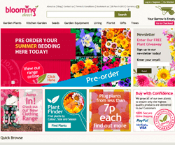 Blooming Direct Discount Codes
